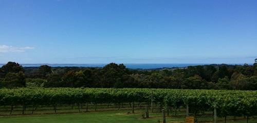 华廷酒窖带你去最具人气的澳洲酒庄(上)