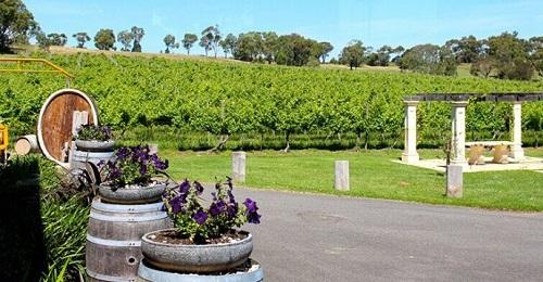 华廷酒窖带你去最具人气的澳洲酒庄(下)