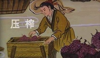 悠久的中国葡萄酒文化