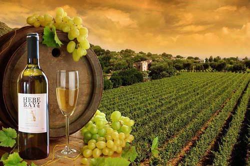 澳洲葡萄酒如何选购