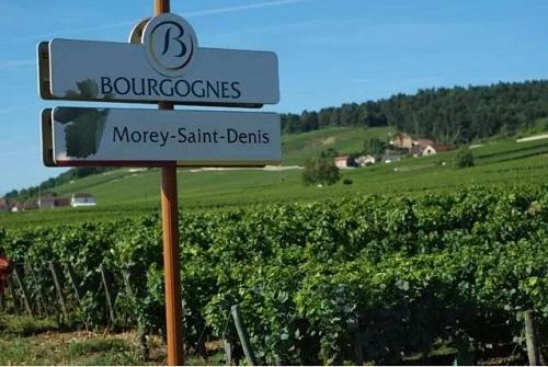 世界酒庄之法国夜丘