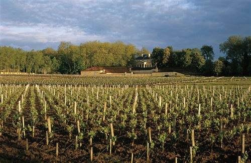 法国酒庄——走进梦洛