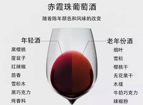 影响葡萄酒陈年的因素