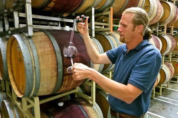 葡萄酒酿酒师的工作