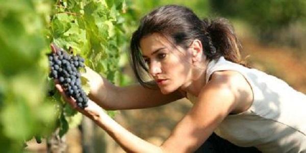 葡萄酒品酒时说的平衡感是什么?