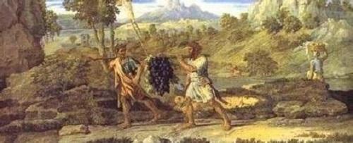 葡萄酒的起源