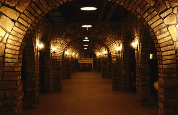 葡萄酒厂家的酒窖也是这样的!