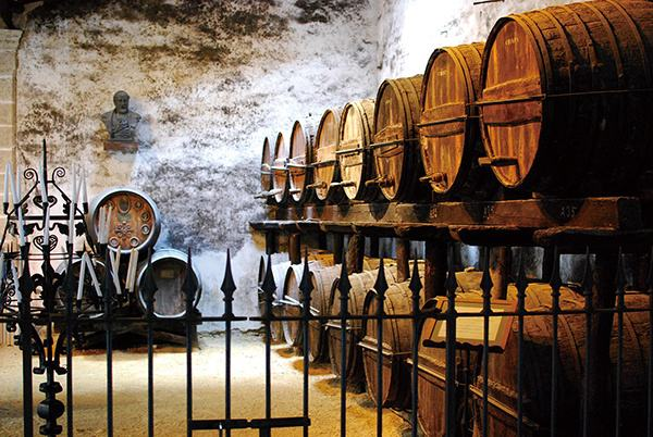 恒温酒柜里永葆童心的葡萄酒