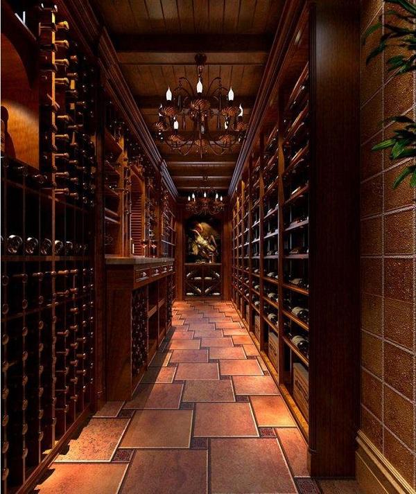 恒温酒窖可以同时存放葡萄酒和雪茄吗?